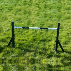 black agility practice jump complete in garden